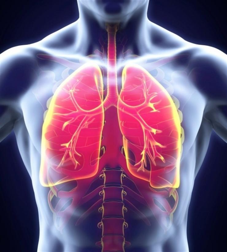 Todo lo que debe saber acerca de la tuberculosis